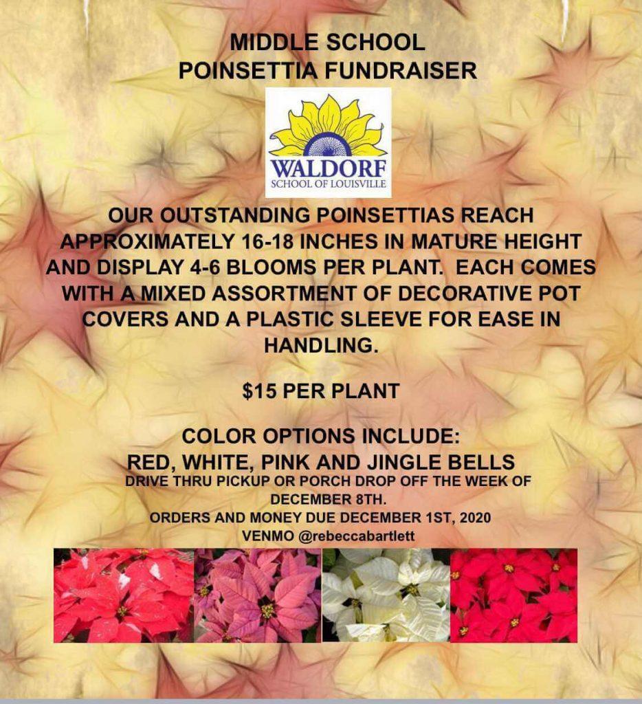 Middle School Poinsettia Fundraiser